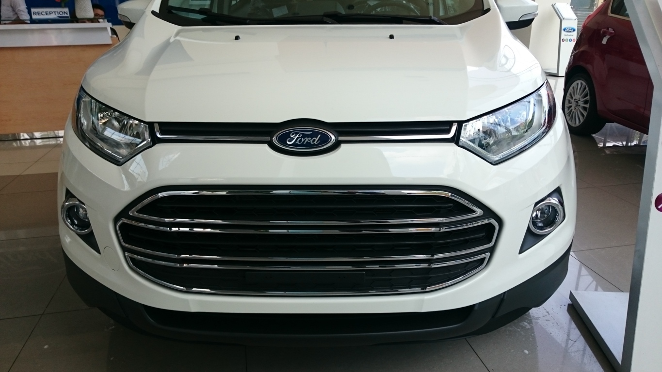 Xe Ford Ecosport 2017 13
