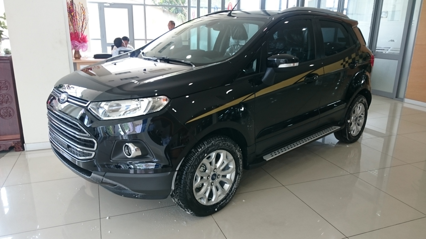 Xe Ford Ecosport 2017 11