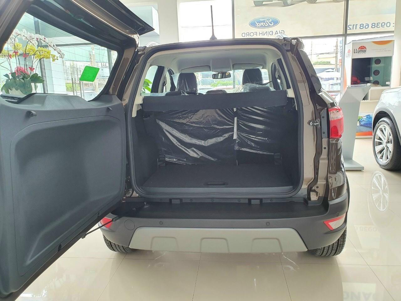 Ford Ecosport 2021 12